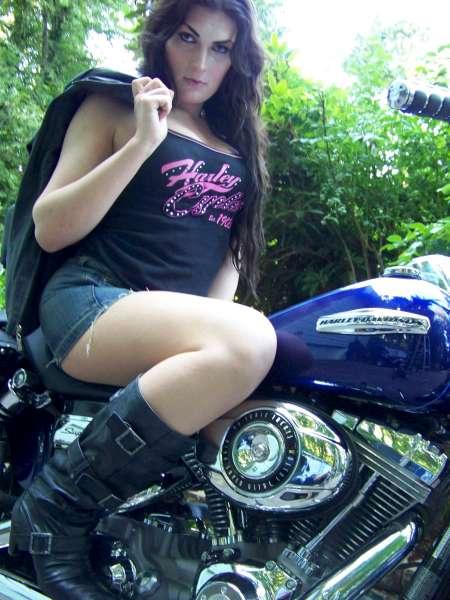 Harley7-600